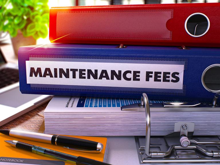 llc fees